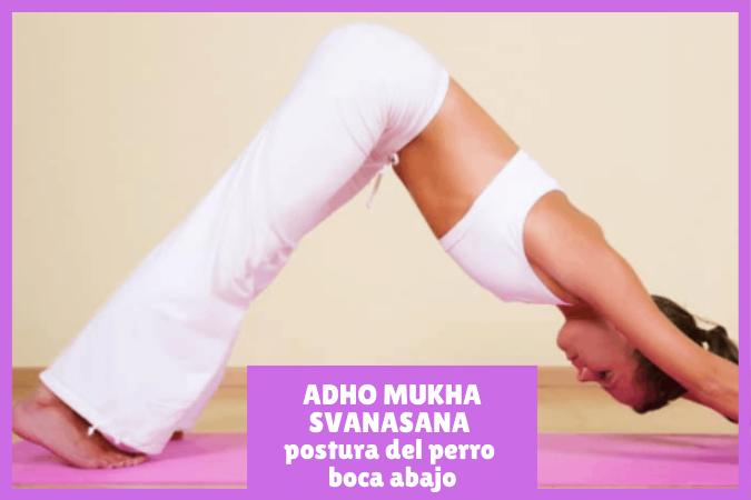 yogui practicando ADHO MUKHA SVANASANA o la postura del perro boca abajo