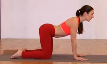 yogui en postura de la vaca (secuencia vaca y gato)