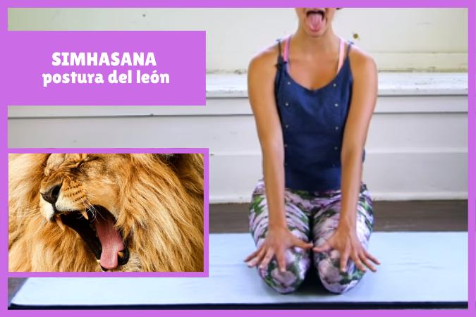 yogui sacando lengua haceSIMHASANA la postura del león - león ruge