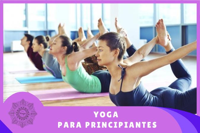 alumnos en clases de yoga para principiantes